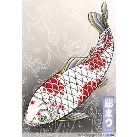 47 KOI'S Horimatsu/Matti