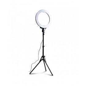 Lampada Led-Ring300 50cm